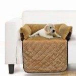cuccia cuscino divano gatto
